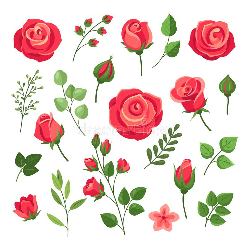 Red roses. Burgundy rose flower bouquets with green leaves and buds. Watercolor floral romantic decor. Isolated cartoon stock illustration