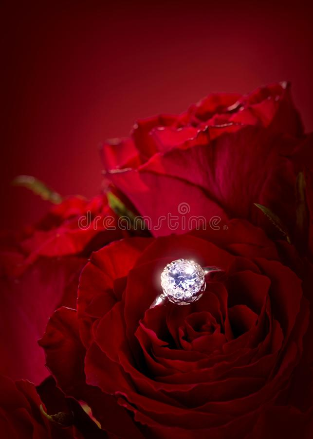 Download Red Roses With Engagement Ring Stock Photo - Image of flower, valentin: 109092756