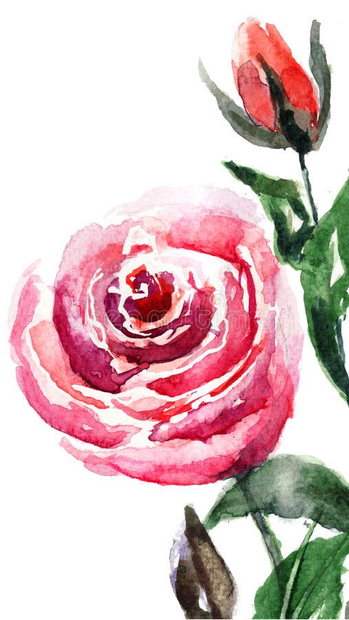 Download Red roses flowers stock illustration. Image of nature - 25709485
