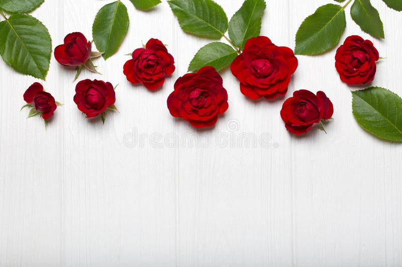 Red roses and green leaves on a white wooden table. Vintage floral pattern. View from above. Flower pattern. stock images