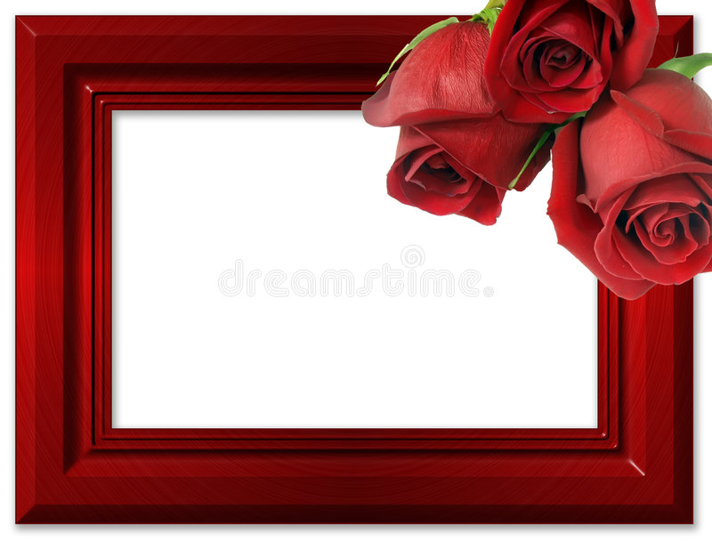 Red roses on a red framework for photos. royalty free illustration