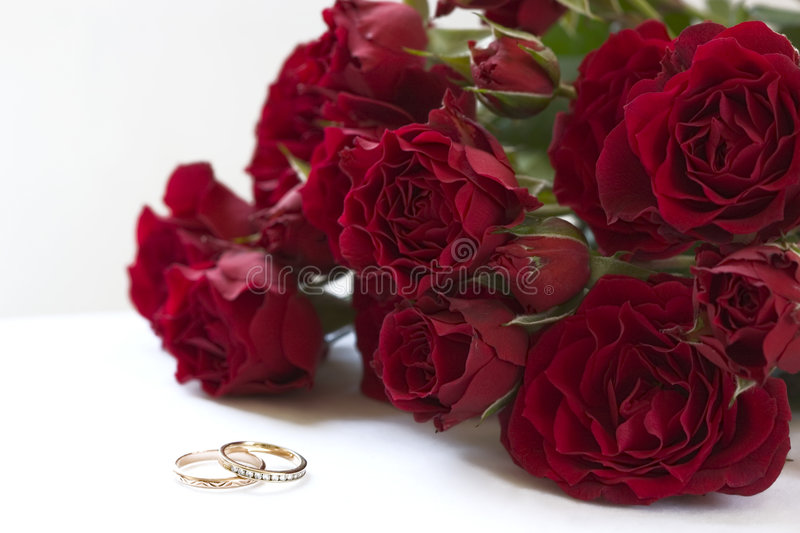 Download Red roses and rings stock image. Image of lovely, roses - 3053823