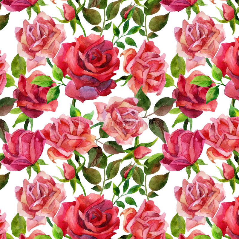 Red roses seamless pattern. royalty free illustration