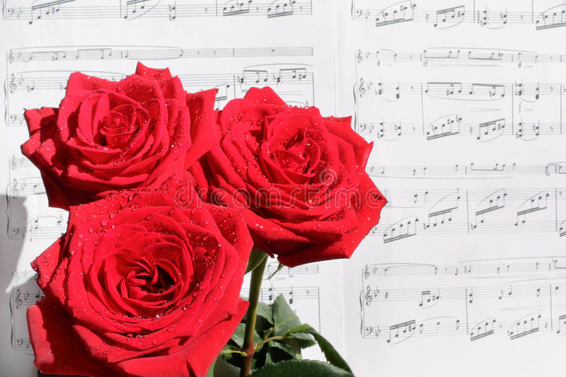 Red Roses and Sheet Music stock images