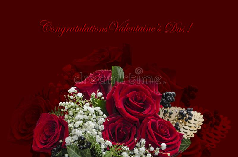 Red roses, twigs with white small flowers and black berries and congratulations on a burgundy background stock photos
