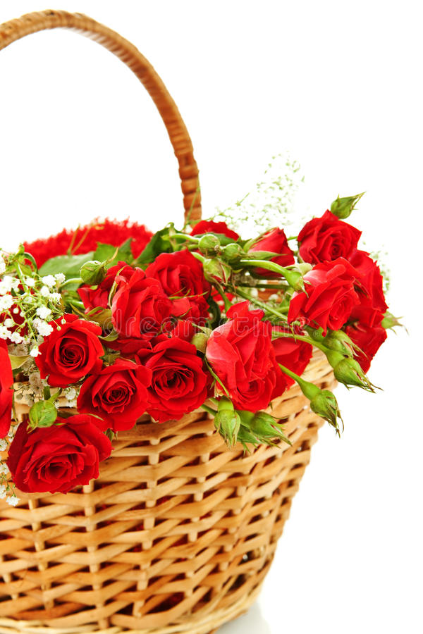 Red Roses In Wicker Basket Royalty Free Stock Image