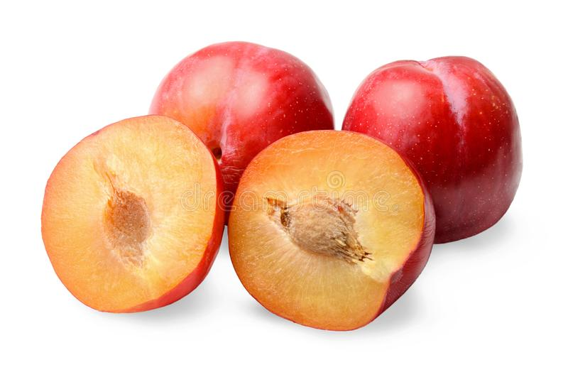 Red round plums. Whole and halves. White isolated background. stock images