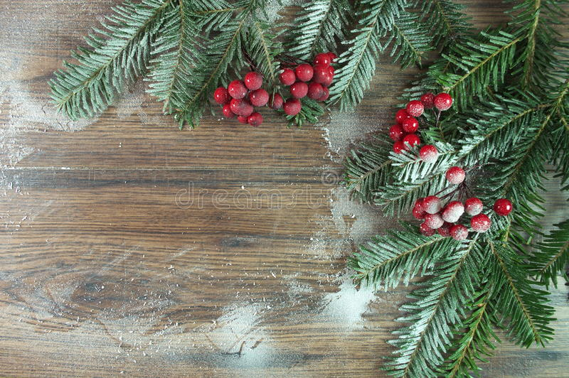 Red rowan. For Christmas for the home royalty free stock images