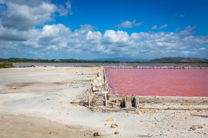 Red salt production in Puerto Rico lake. Pool stock images