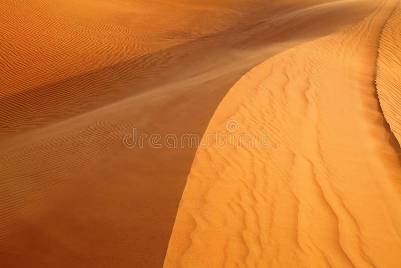 Red sand desert. Red sand Arabian desert near Dubai, United Arab Emirates royalty free stock image