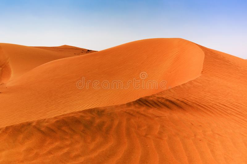 red sand dunes in the Arabian desert royalty free stock photos