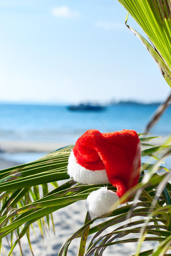 Red Santa S Hat Hanging On Palm Tree On Beach Royalty Free Stock Photography