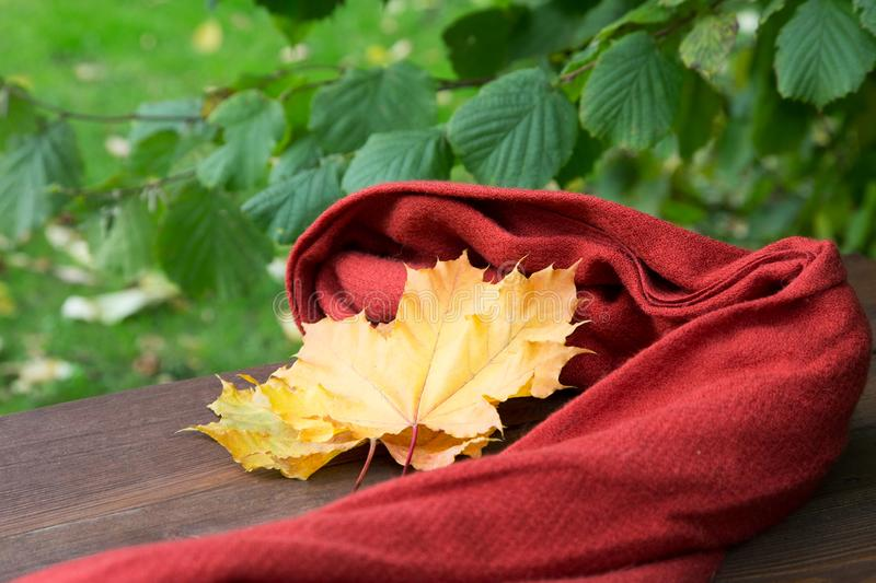 Red scarf and yellow maple leaves on a table. In autumn stock photos