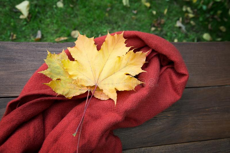 Red scarf and yellow maple leaves on a table. In autumn stock images