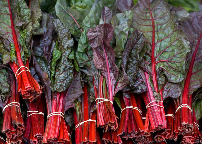 Download Red Shard stock image. Image of organic, farmers, garden - 12923919
