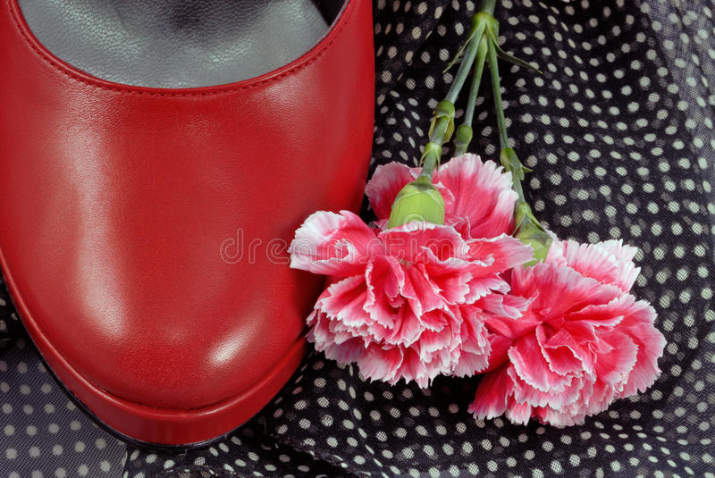Red Shoe And Flower Stock Photos