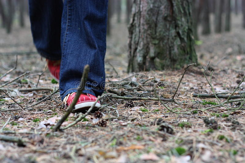 Download Red Shoes Stock Photo - Image: 16282280