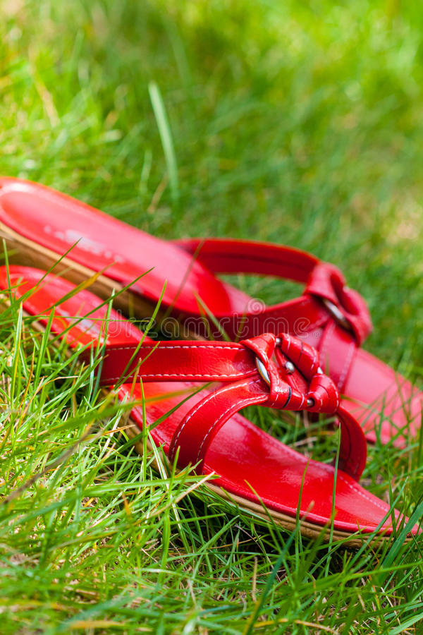Download Red shoes in grass stock image. Image of walk, spring - 27959331