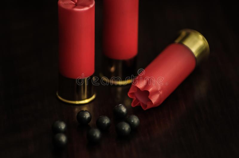 Red shotgun shells on a wooden surface stock photo