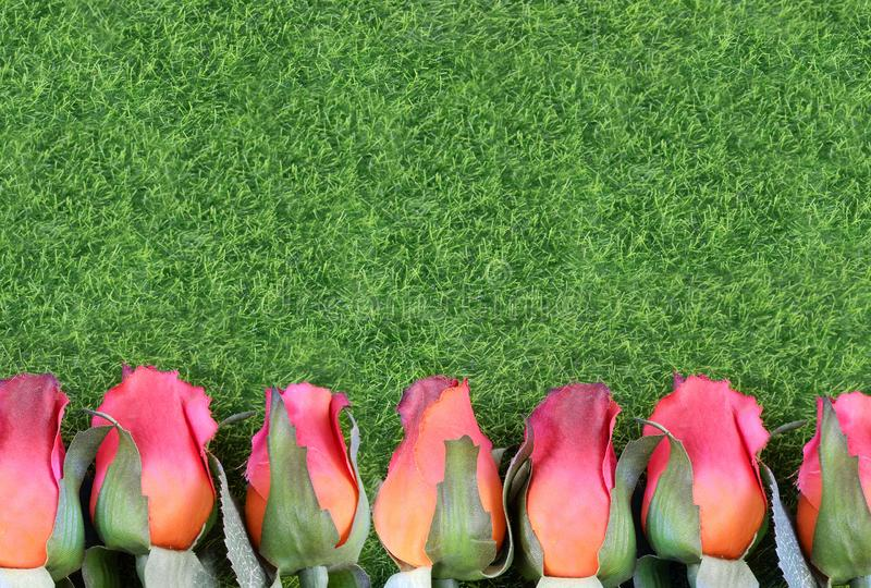 Red silk roses and artificial green grass form a bottom border. Good for the running of the thoroughbred race. royalty free stock image