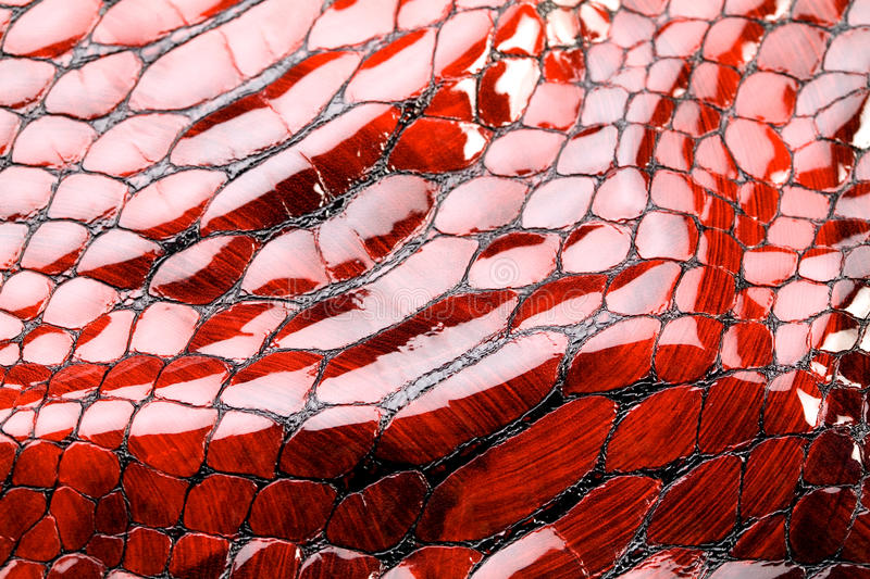 Red snake skin. Red snake skin, texture. Aqua, water drop, tear on skin stock images
