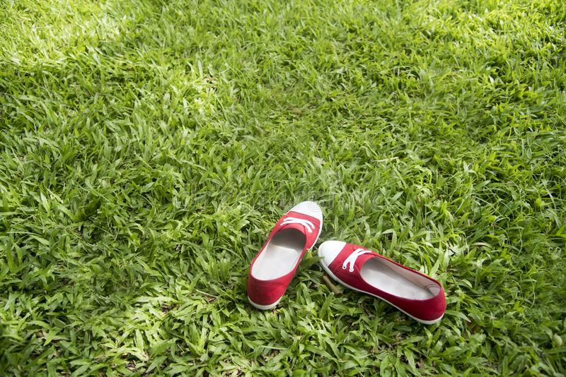 Red sneakers on green grasses. Travel Concepts royalty free stock image