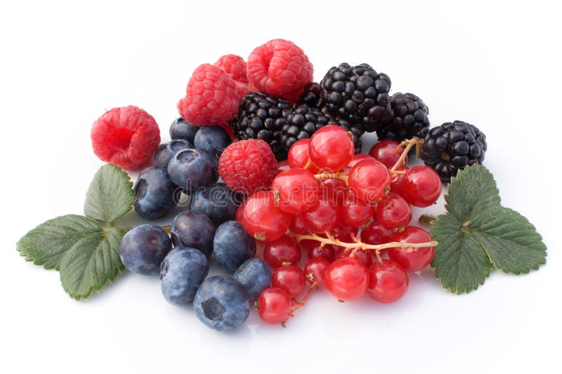 Download Red Soft Fruits stock photo. Image of purple, fresh, soft - 16632502