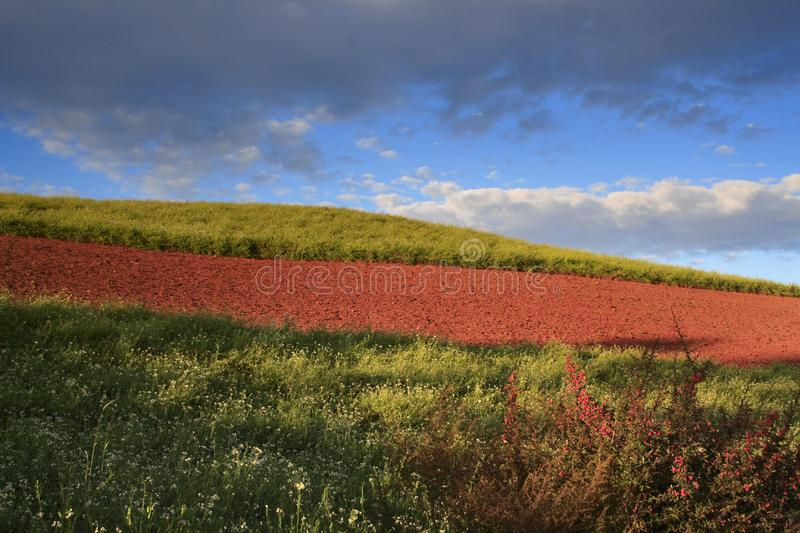 Download The Red Soil of Dongchuan stock image. Image of nobody - 8623951