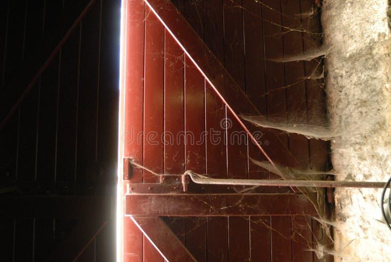Red Spiderweb Door Royalty Free Stock Photo