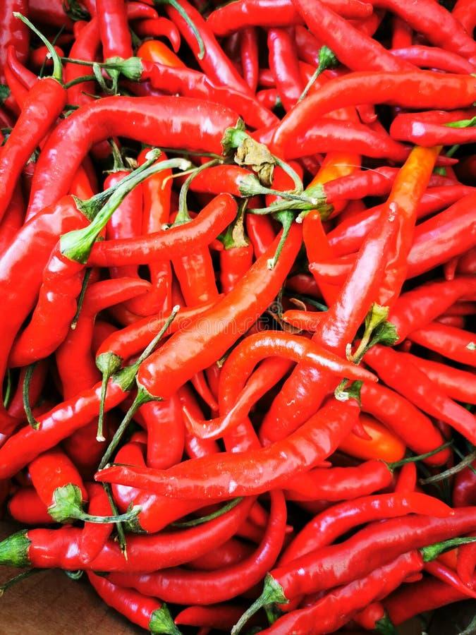 Red Spivey chili en x27's in een stapel op de lokale markt stock foto