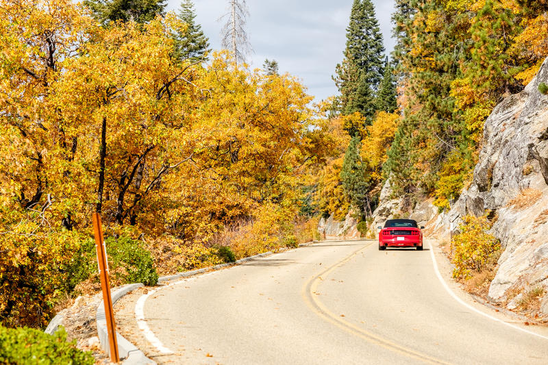 Red sport car on highway at autumn, Sequoia National Park. Red convertible sport car on highway at autumn, Sequoia National Park. California, United States stock photos