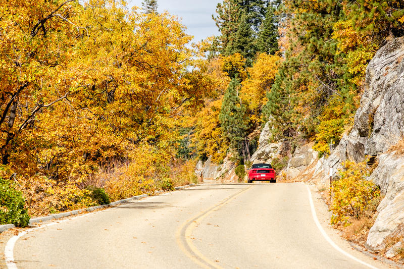 Red sport car on highway at autumn, Sequoia National Park. Red convertible sport car on highway at autumn, Sequoia National Park. California, United States royalty free stock image
