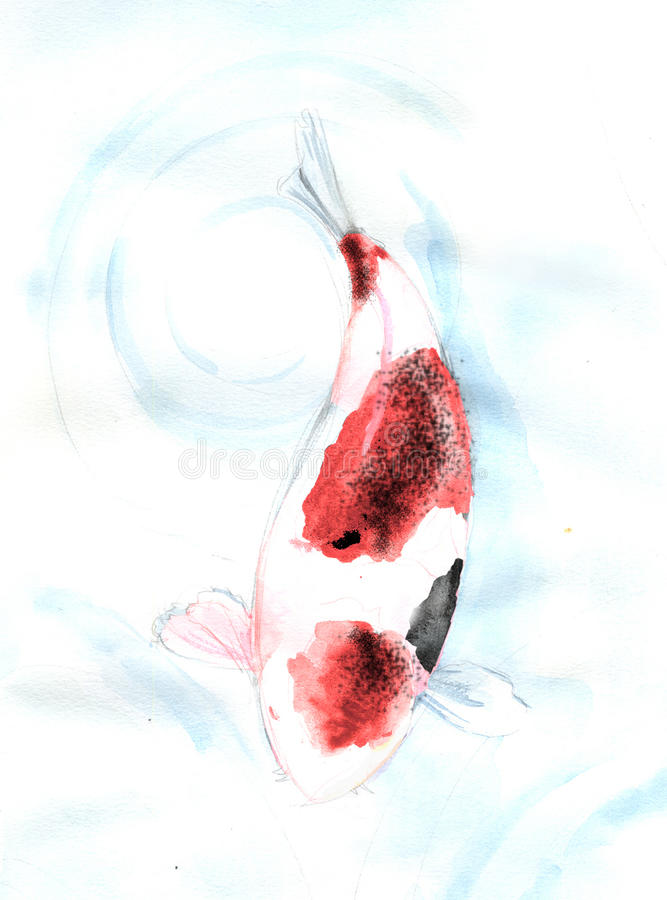 Red spot Koi carp fish watercolor painting royalty free stock images