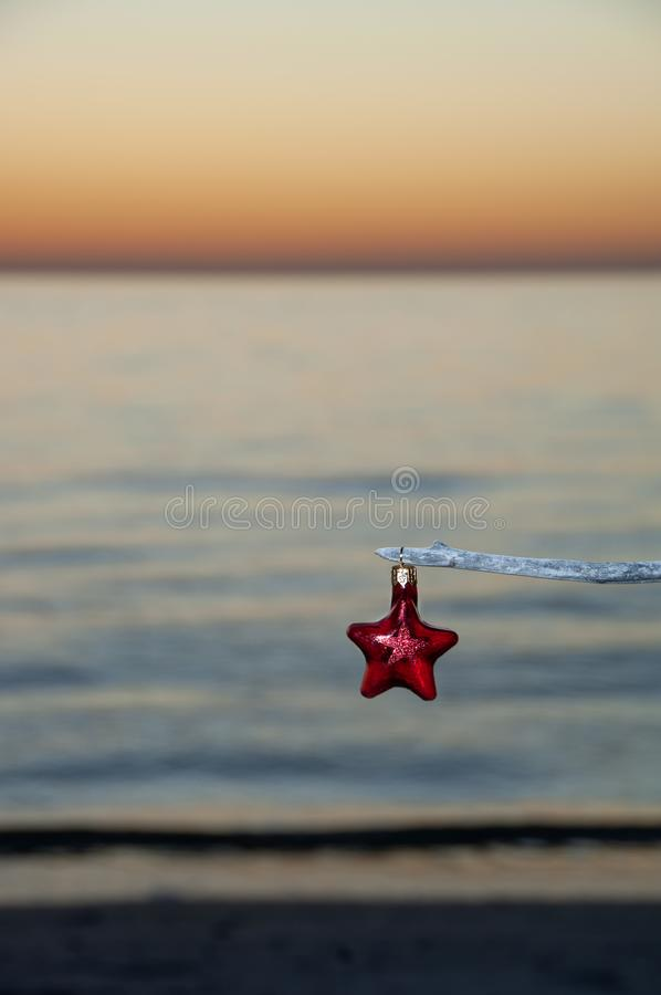 A red star Christmas ornament hanging on a branch at sunset. A glass red star Christmas ornament hanging on a driftwood branch at sunset along Barefoot Beach royalty free stock photo