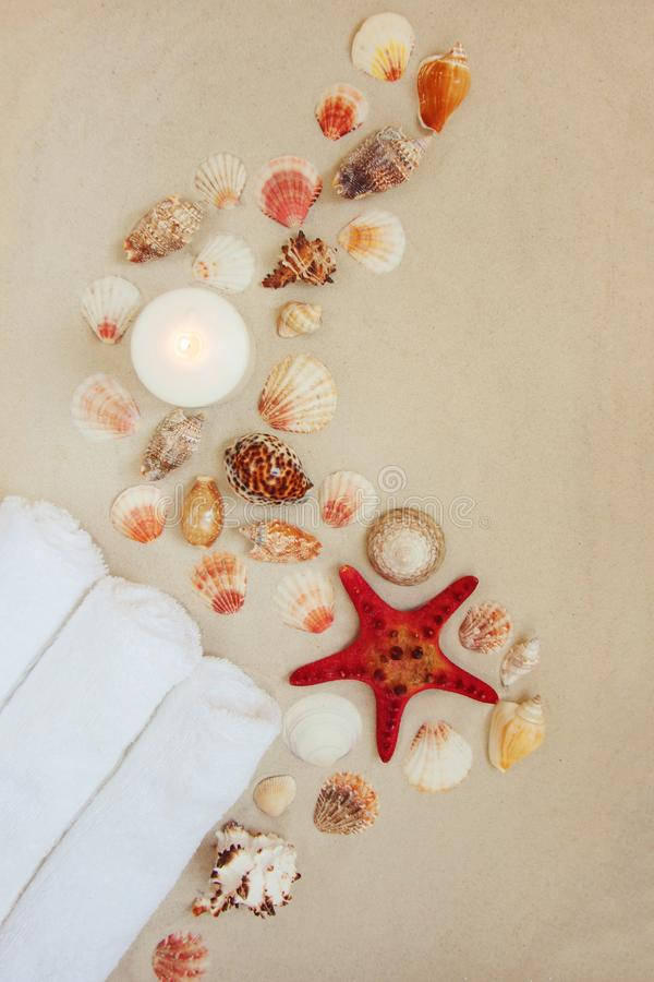 Sea shells and red star fish on sandy beach with copy space for text royalty free stock photos