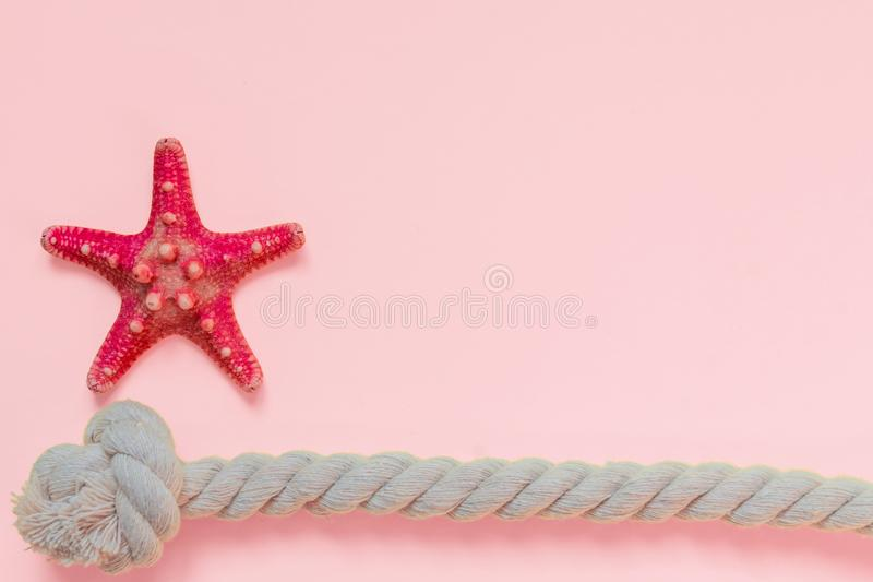 Red starfish and rope knot on bright pink background with copy space. summer holiday and vacation concept.  royalty free stock photos