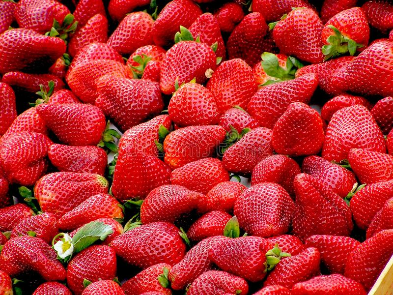 Red Strawberries Free Public Domain Cc0 Image