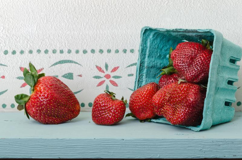 Red Strawberries on Blue Shelf royalty free stock photo
