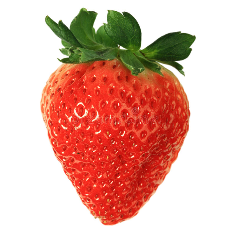 Free Red Strawberry Stock Images - 17772484