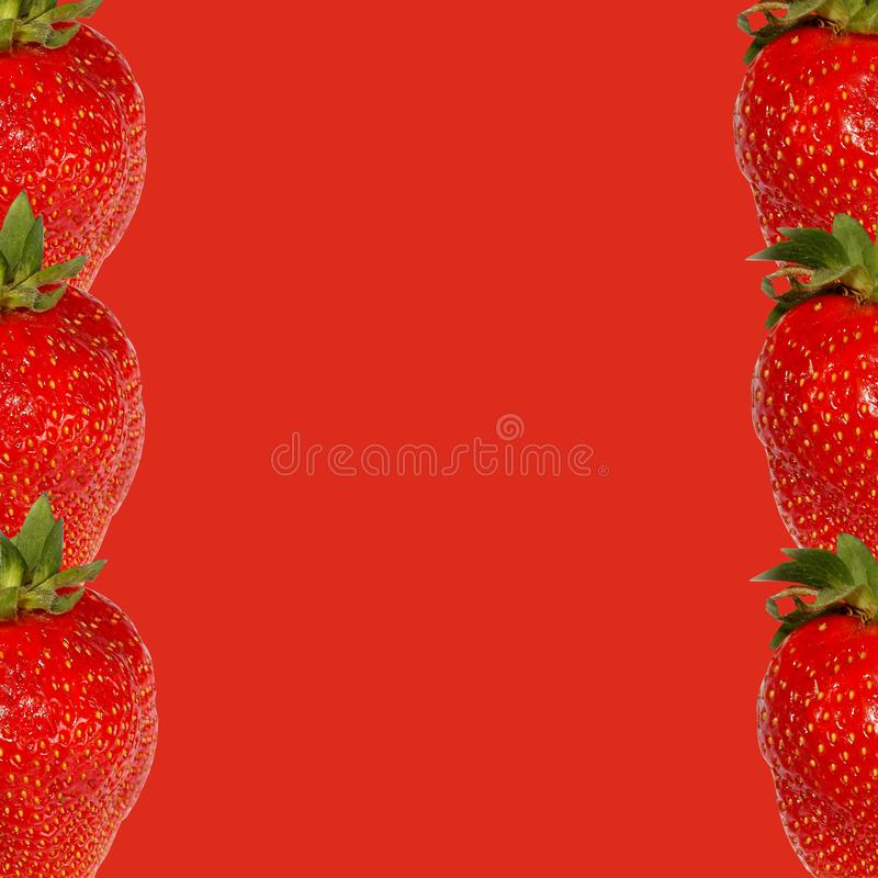 Red strawberry on a red background in the form of a frame stock image