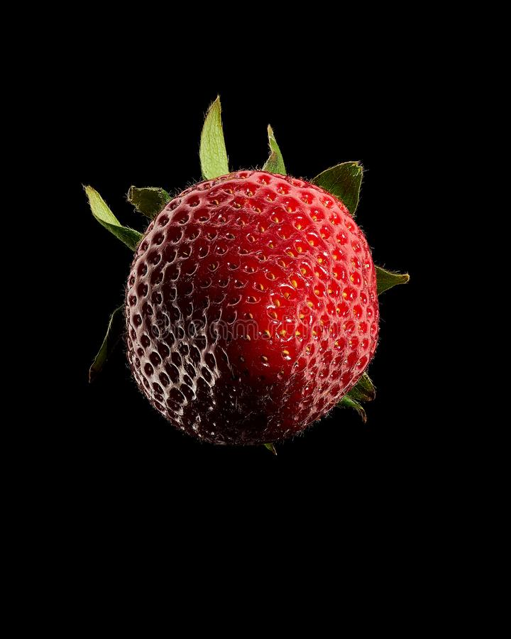 Strawberry with green leaves stock photography