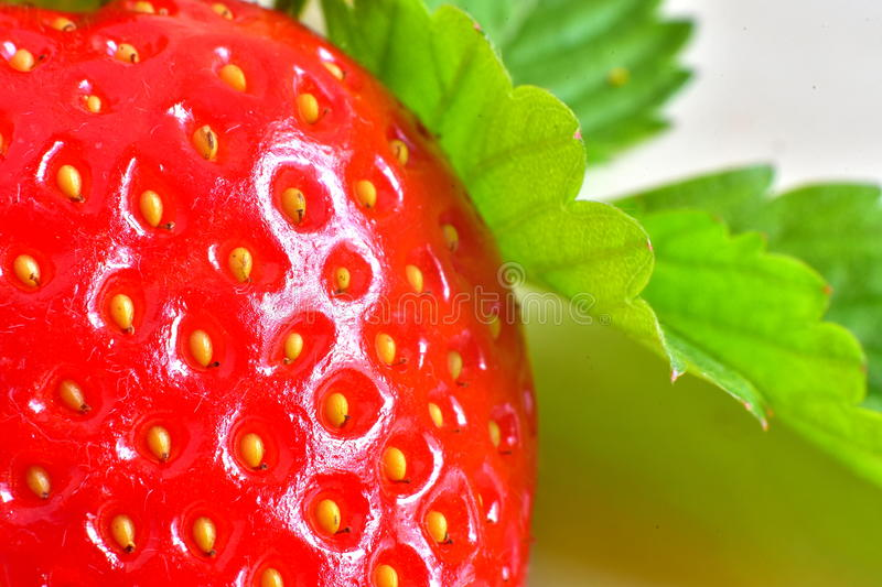 Red Strawberry and its leaves stock photos