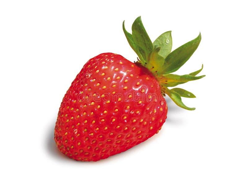Red strawberry macro stock image