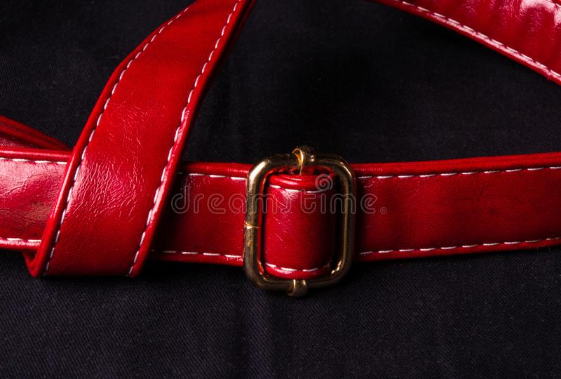 Red suede strap with yellow metal buckle. Closeup of the red suede strap with yellow metal buckle royalty free stock photos