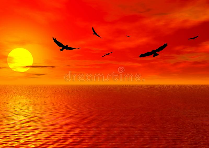 Red sunset and birds royalty free stock photos
