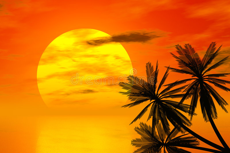 Download Red sunset and palm stock illustration. Illustration of seascape - 7064829