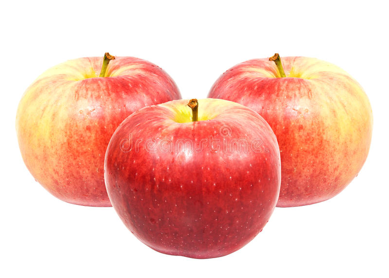 Download Red sweet apples stock photo. Image of drop, apple, agriculture - 10958720