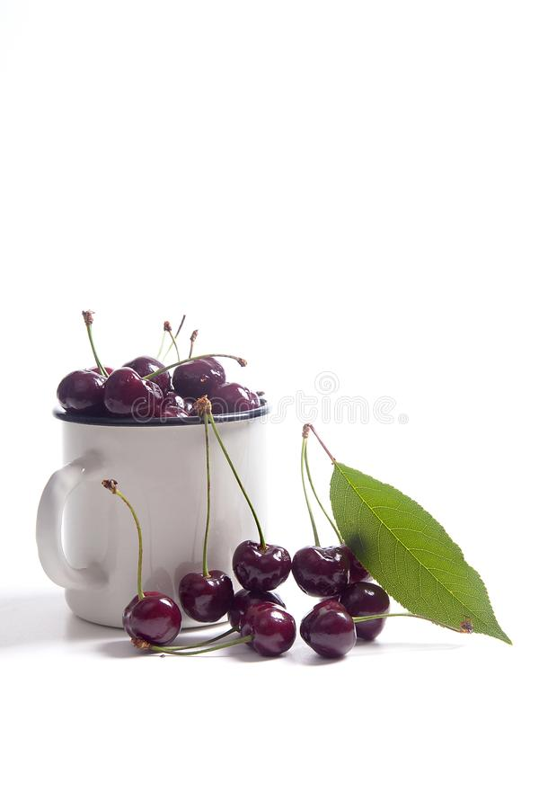 Red sweet cherry in white cup with green leaf isolate on white royalty free stock images