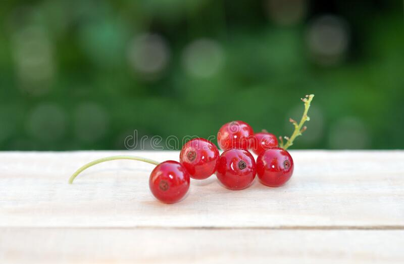 Red sweet currant berry on wooden table, summer harvest. Red sweet currant berry on the wooden table, summer harvest stock images