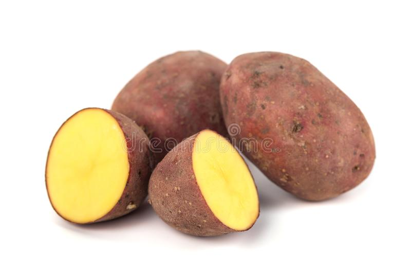 Red sweet large potato close up isolated on white background stock photography